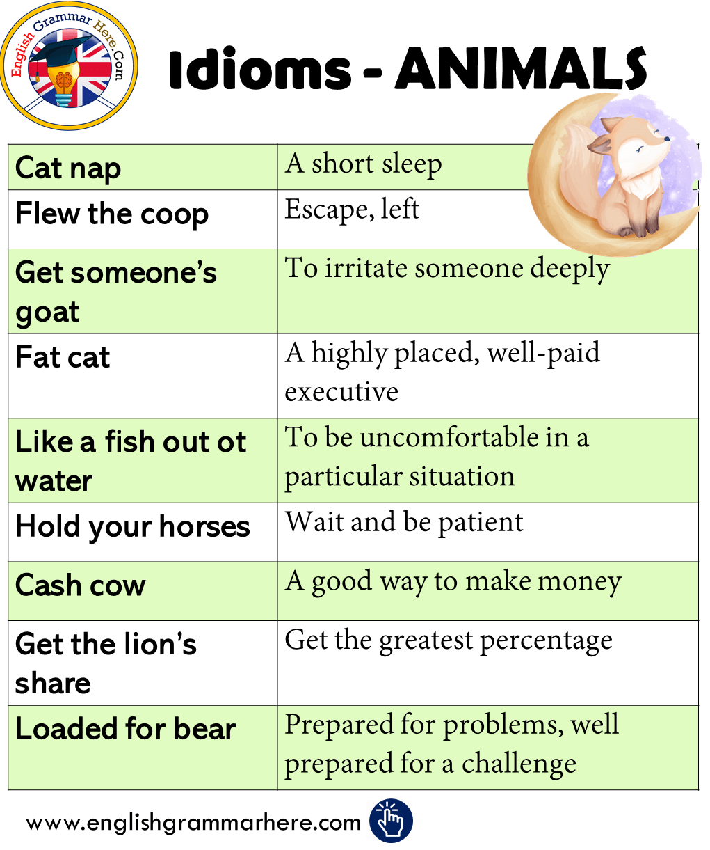 Idioms about ANIMALS in English