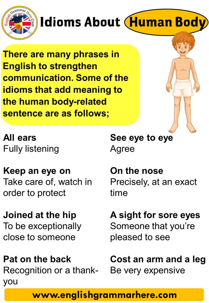 English Idioms About Human Body, List of Human Body Idioms