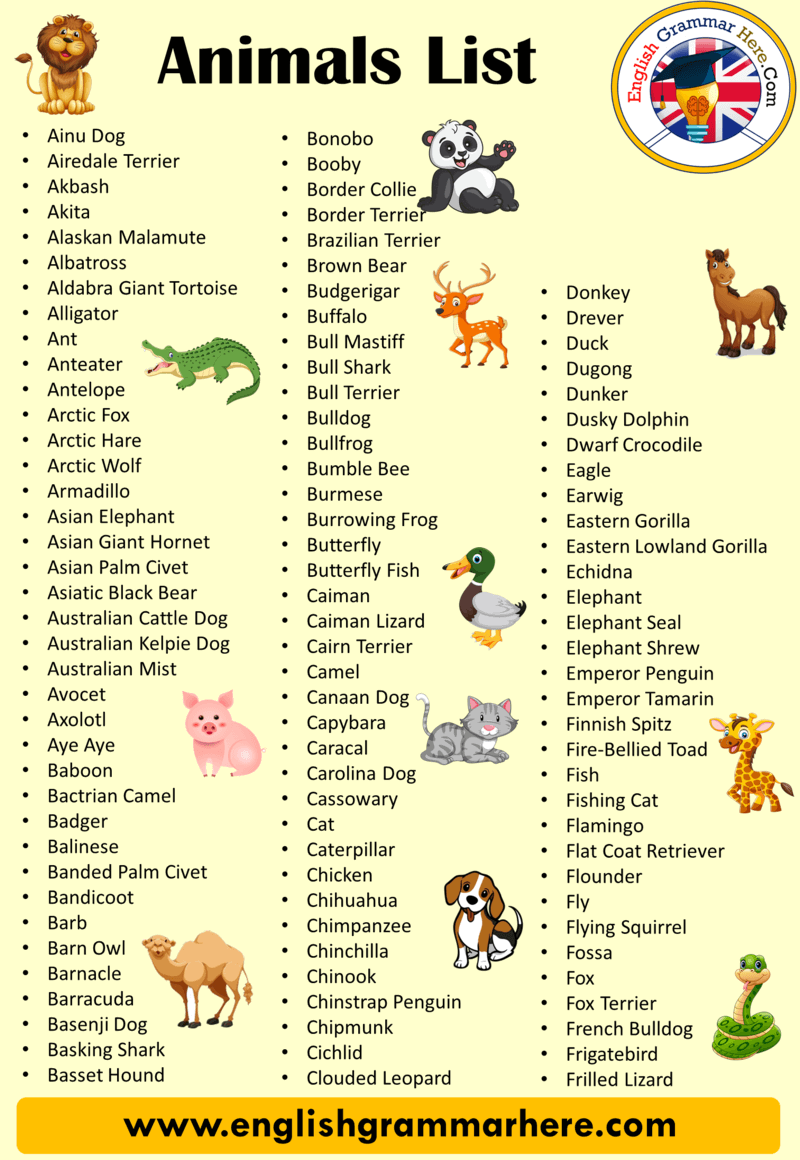 Animals Names List from A to Z