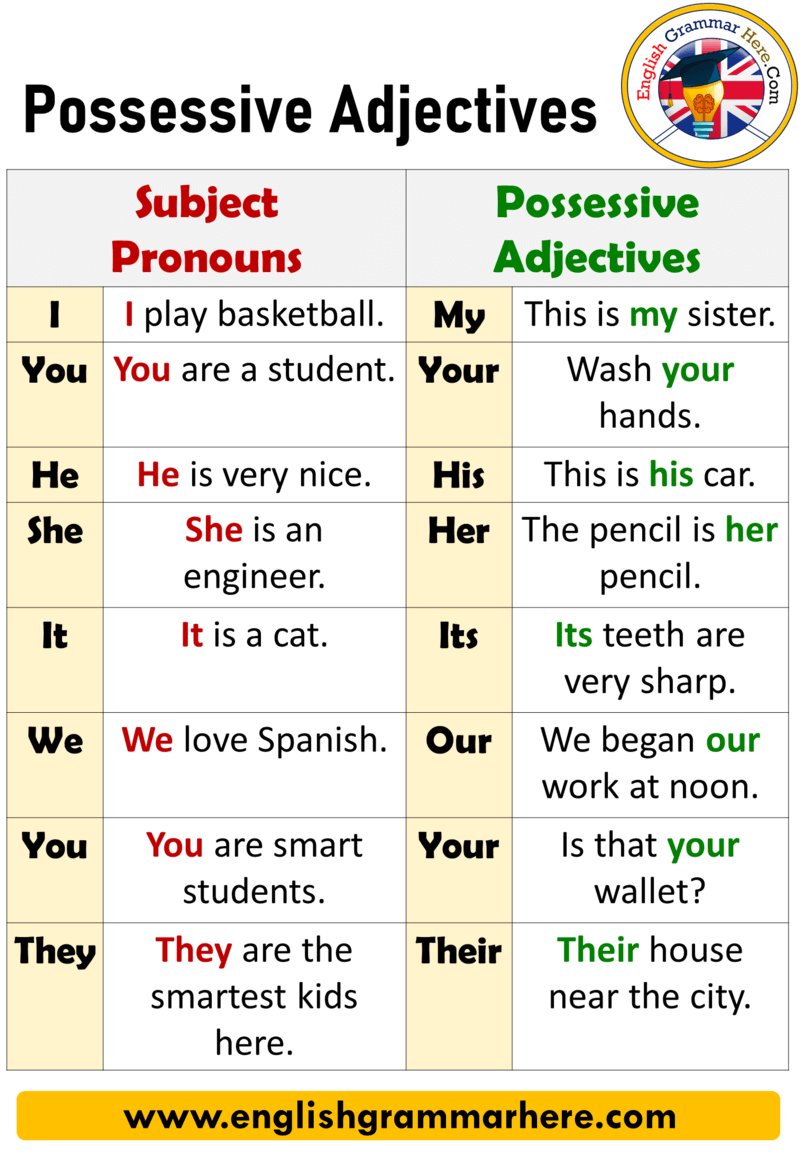 Possessive Adjectives, Definition and Example Sentences