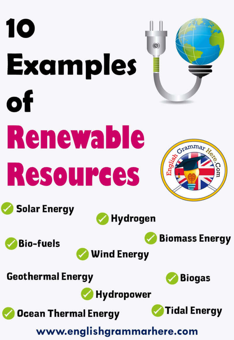 Renewable Resources, 10 Examples of Renewable Resources