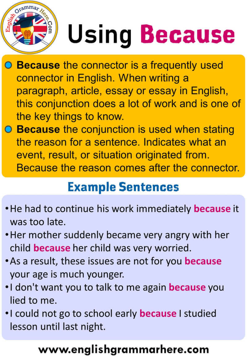 How to Use Because and Example Sentences;