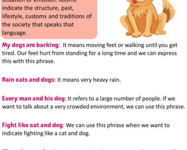 English Dog Idioms, Definition and Examples