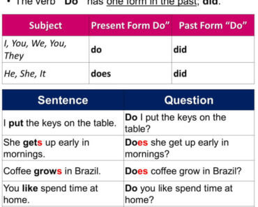 Using Do and Does, Definition and Example Sentences