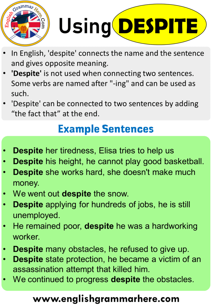 How tou use Despite, Using Despite in English, Example Sentences with Despite
